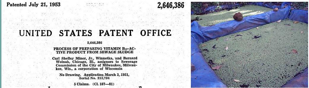 patent-b12-niz.jpg